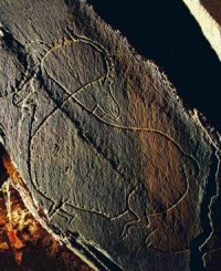 Gravura Paleolítica do Vale do Côa